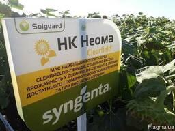 Семена подсолнечника НК Неома Круизер Clearfield® (Syngenta)