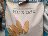 Семена подсолнечника НС Х 2652 (Гранстар) - photo 1