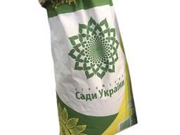 Семена подсолнечника НС Рими 2 (под евролайтнинг)