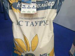 Семена подсолнечника НС Таурус под Евро-Лайтнинг