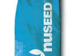 Семена подсолнечника Торино Нусид® (Nuseed) Clearfield