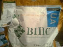 Семена подсолнечника Украинское Сонечко ВНИС