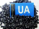 Семена подсолнуха Лимит под Евро-Лайтнинг - фото 1