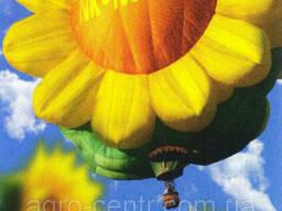 Семена подсолнуха НК Неома (Евролайтнинг)