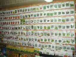 Семена, травы, удобрение, свекла, кукуруза, лук Голландия, агроволокно, кусты роз