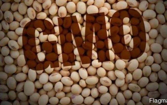 Семена сои трансгенный сорт Kansas ГМО