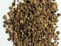 Семена свеклы (буряка) кормового