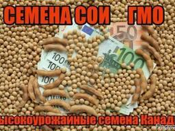 Семена трансгенной сои ГМО Abbi Канада
