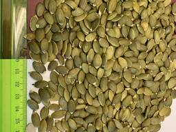 Семена тыквы (Китай), 1% боя