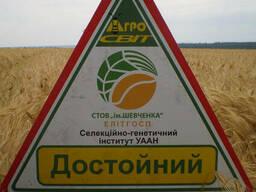 Семена ячменя озимого Достойный от производителя