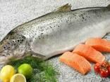 Семга, лосось, форель - фото 1