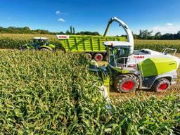 Сенаж уборка кукурузы на силос обработка земли