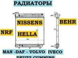 Серцевина радиатора (соти) Рено Магнум Евро2. Латунь. Нисенс