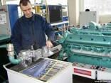 Сервисное обслуживание и ремонт генераторов (электростанций) - фото 1