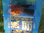 Сетка для сушки рыбы, грибов, фруктов, овощей. Сушилка - фото 2