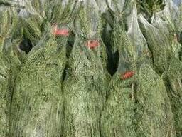 Сетка для упаковки сосен и елок