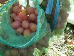 Сетка овощная капроновая на 2 кг. 5кг. для защиты винограда.