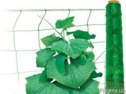 Сетка шпалерная (для огурцов, винограда) - огуречная сетка