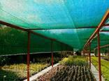 Сетка затеняющая Agreen 60 % с укрепленными краями, ширина 10 м, длина 50 м - фото 2