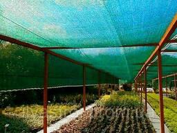 Сетка затеняющая Agreen 60 % с укрепленными краями, ширина 4 м, длина 50 м