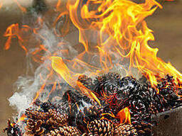 Шишка для быстрого розжига мангала, для декора - удобрения