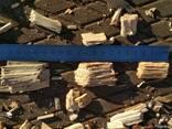 Тріска деревна - фото 2