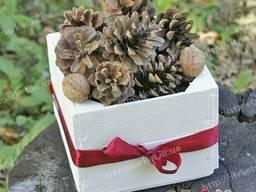 Шишки елочные ( сосновые ) натуральные декор купить