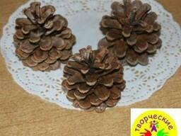 Шишки сосновые купить отборные крупные сухие для декора - фото 3