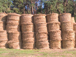 Шпагат для сена (130м/кг)