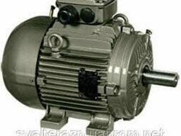 Синхронные электродвигатели с возбуждением от постоянных. ..