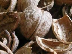 Скорлупу грецкого ореха