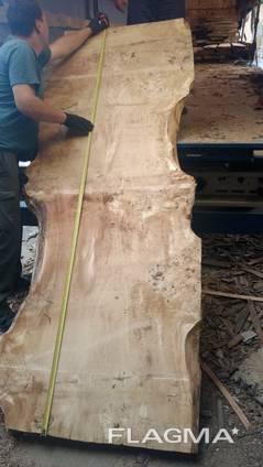 Слэбы из дерева Тополь каповый и Берест-эксклюзивные спилы