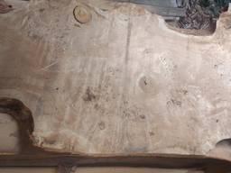 Слэбы из дерева Тополь каповый и Берест-эксклюзивные спилы - фото 3