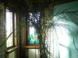 Снимут 2-х комн квартиру на пр. Кирова, ул. Титова, ул. Раб