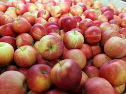 Соковое яблоко