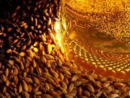 Солод ячменный светлый пивоваренный высшего качества