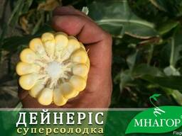 Солодка кукурудза Дейнеріс F1, 200 насінин, ТМ Мнагор