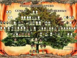 Составление генеалогического древа