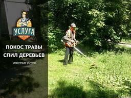 Спил деревьев и Покос травы в Симферополе и пригороде
