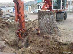 Спил деревьев, корчевка пней и планировка территории