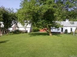 Спил деревьев,обрезка сада,покос травы,расчистка территории