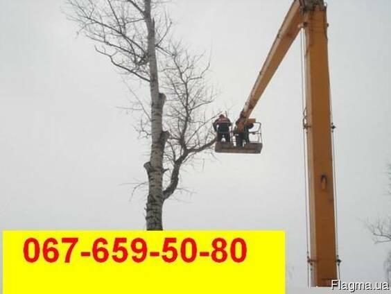 Спиливание деревьев , обрезка веток, кронирование деревьев