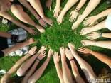 Спортивный тимбилдинг на природе - фото 4