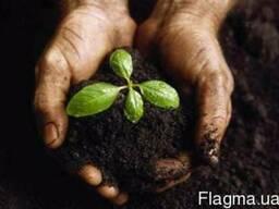 Средства защиты растений по оптовым ценам с доставкой по Укр
