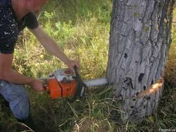 Срезание деревьев