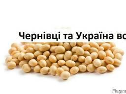 Куплю Сою Черновцы Украина
