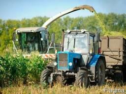 Срочно! Продам сельхозпредприятие в Киевской области 1600га - фото 1