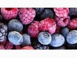 Статична заморозка ягід, фруктів, грибів та інших харчових п - фото 1