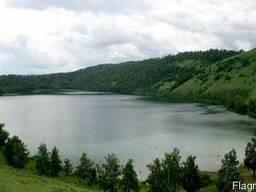 Ставок, пруд, озеро, водоём для разведения рыбы