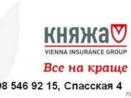 Страхование  Княжа/ Рабочие приглашение